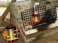 Smarowanie 2 łożysk znajdujących się za osłoną – smarowanie bez konieczności zatrzymania urządzenia (cementownia)